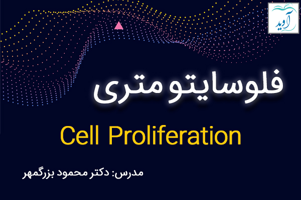 Cell Proliferation