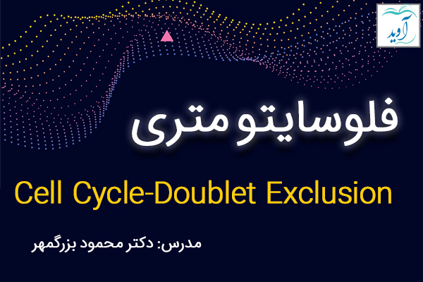 Cell Cycle-Doublet Exclusion